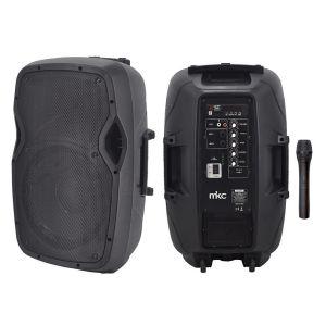 "CASSA SISTEMA KARAOKE PORTATILE 25W RMS WOOFER 8"" BLUETOOTH RADIO FM USB MP3 PLAYER MICROFONO WIRELESS VHF SLOT SD"